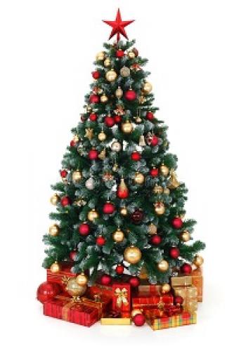 Anul Nou & Crăciun