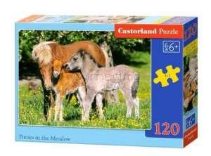 CASTORLAND MIDI 120